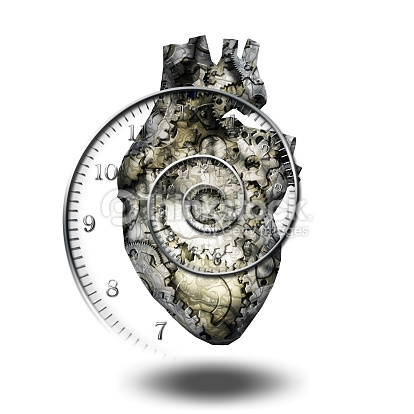 human dive response changes in heart Start studying human anatomy chapter 20  the chambers of the human heart are  several types of receptors lead to reflexive changes in the heart.